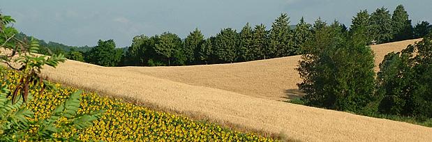 mondo rurale